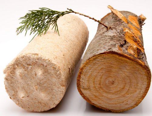 5 powodów, by zainteresować się biomasą z tartaku Consultor