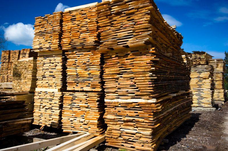 skład różnych rodzajów gatunków drewna
