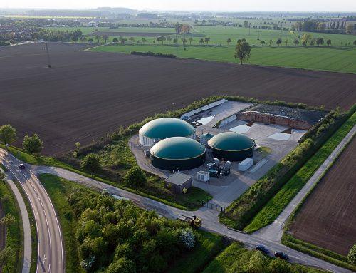 Kilka uwag o polskim sektorze biomasy na tle światowym