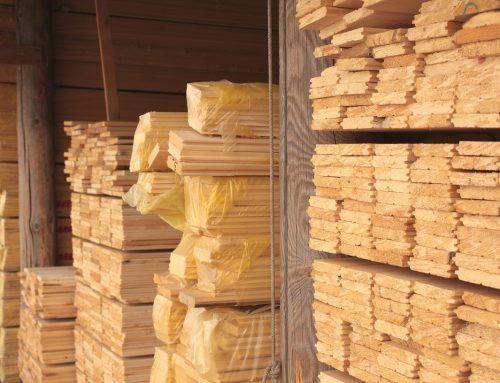 Klasy jakości wykorzystywane do sortowania tarcicy sosnowej