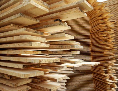 7 wad drewna powstających w czasie procesu suszenia