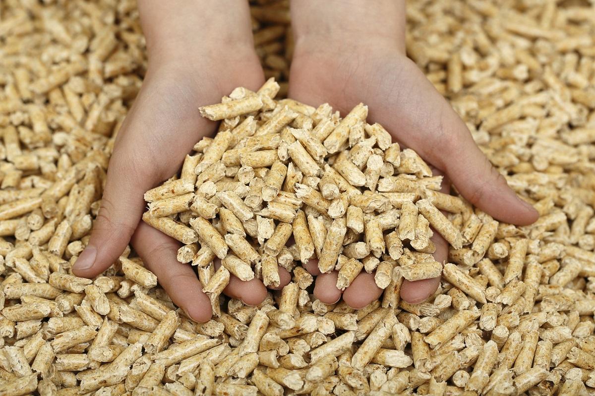 biomasa pochodząca z podlaskiego tartaku