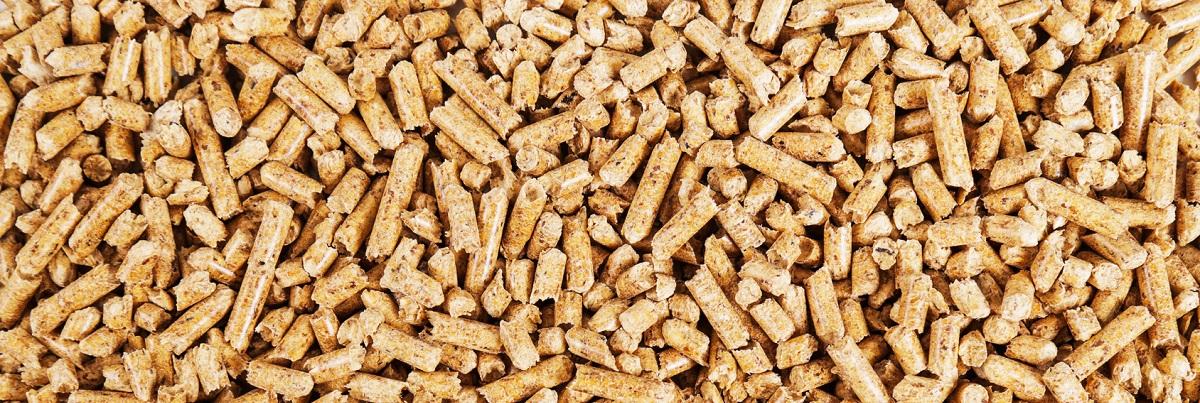 biomasa wyprodukowana w podlaskim tartaku Consultor