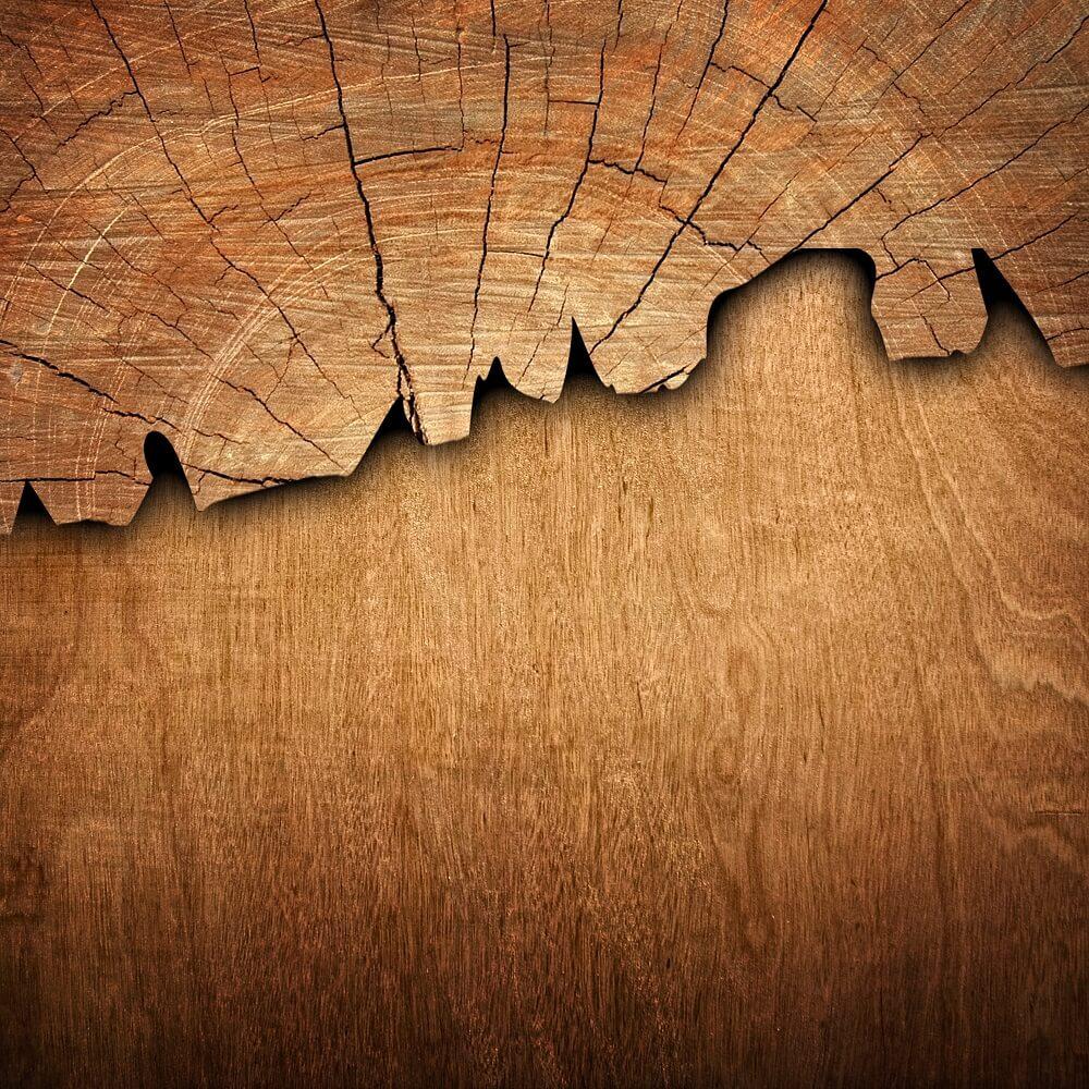 drewno z dębu